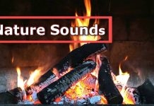 burning fire nature sounds