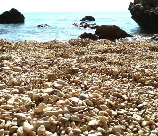 nature-sounds-ocean