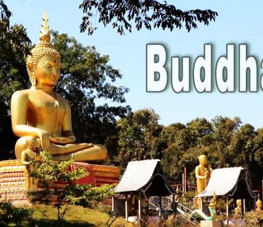buddha meditation