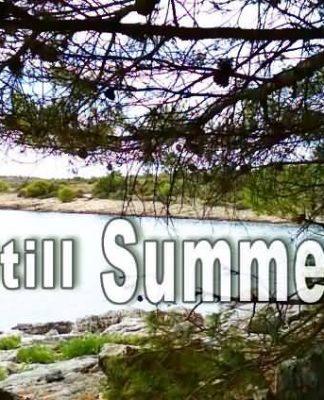 remember summer