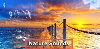 rain thunder nature sounds