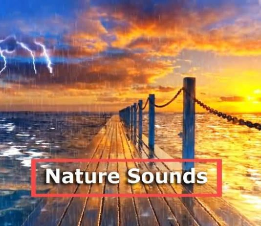 rain thunder nature sounds