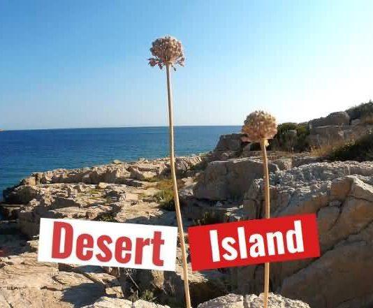 desired-island