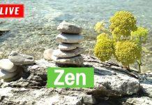 zen-stone-meditation
